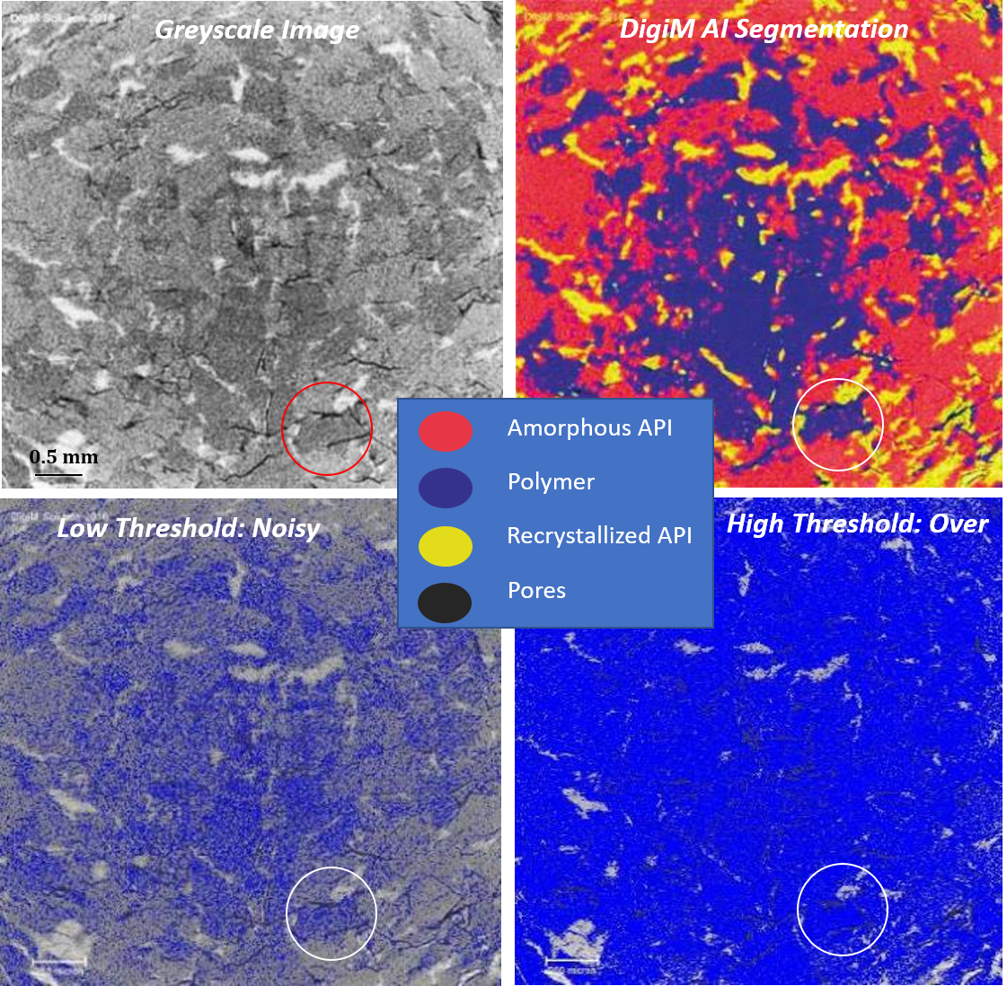 DigiM AI image analytics detecting recrystallization in an amorphous solid dispersion