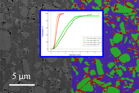 DigiM image-based FIB-SEM study of a PLGA microsphere using AI analytics and forming a controlled release prediction model